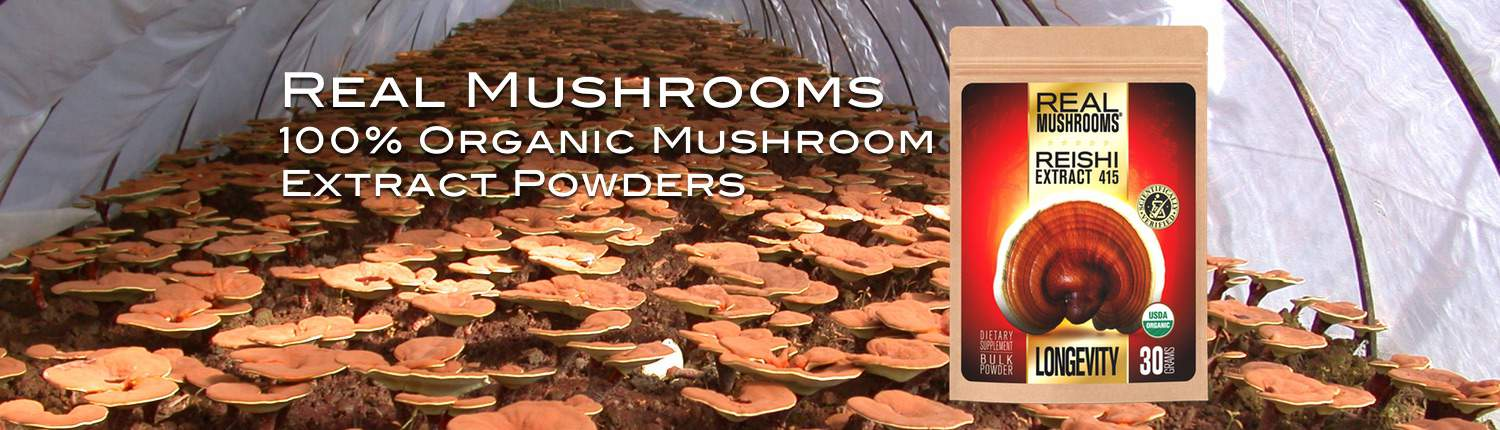 Real Mushrooms: 100% Organic Mushroom Extract Powders