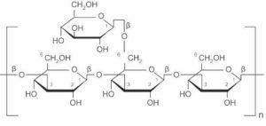 beta-glucan molecular structure