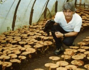 Jeff Chilton at a Reishi farm in China