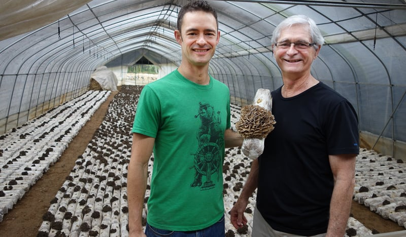Skye and Jeff at an Organic Maitake farm in China