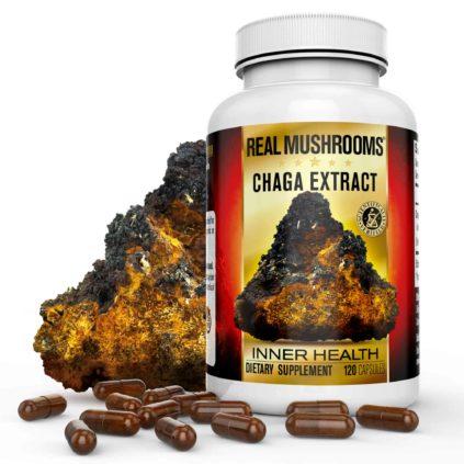 Chaga Extract Capsules