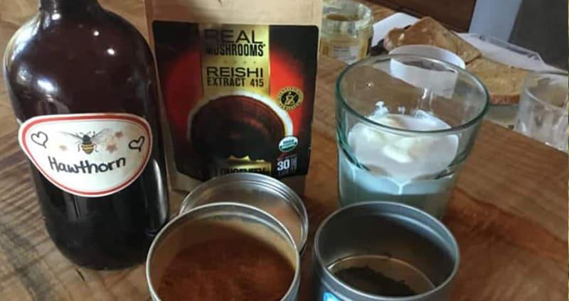 reishi yogurt tonic recipe