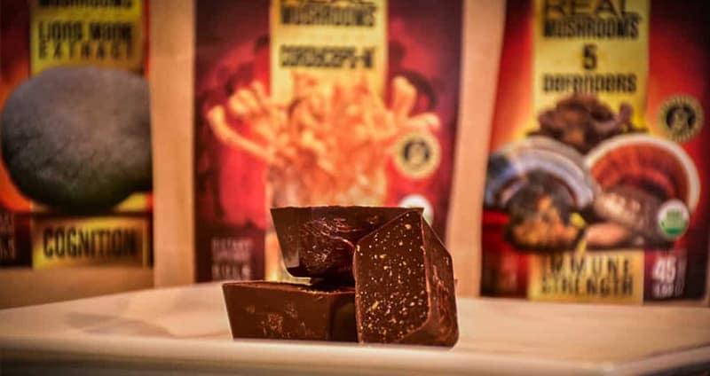 Real Mushrooms Dark Chocolate