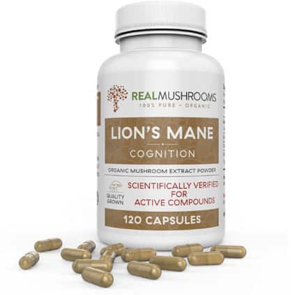 Lion's Mane Mushroom Extract bottle