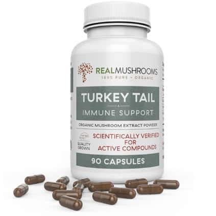 Turkey Tail Mushroom Extract bottle