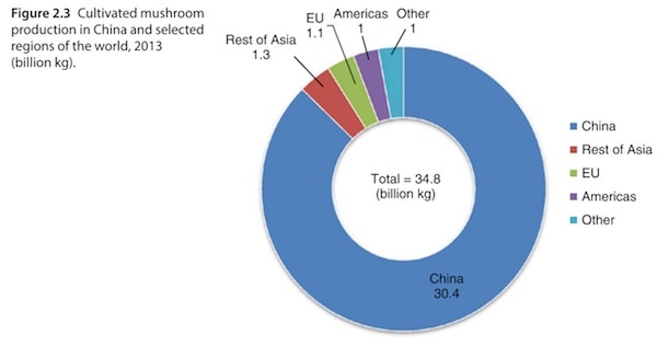 Cultivated mushroom production in China and selected regions of the world, 2013 (billion kg)