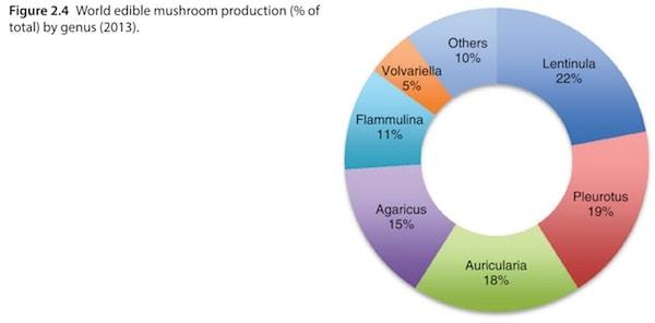 World edible mushroom production (% of total) by genus (2013)