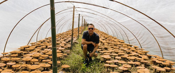 Me at an organic reishi farm in China.