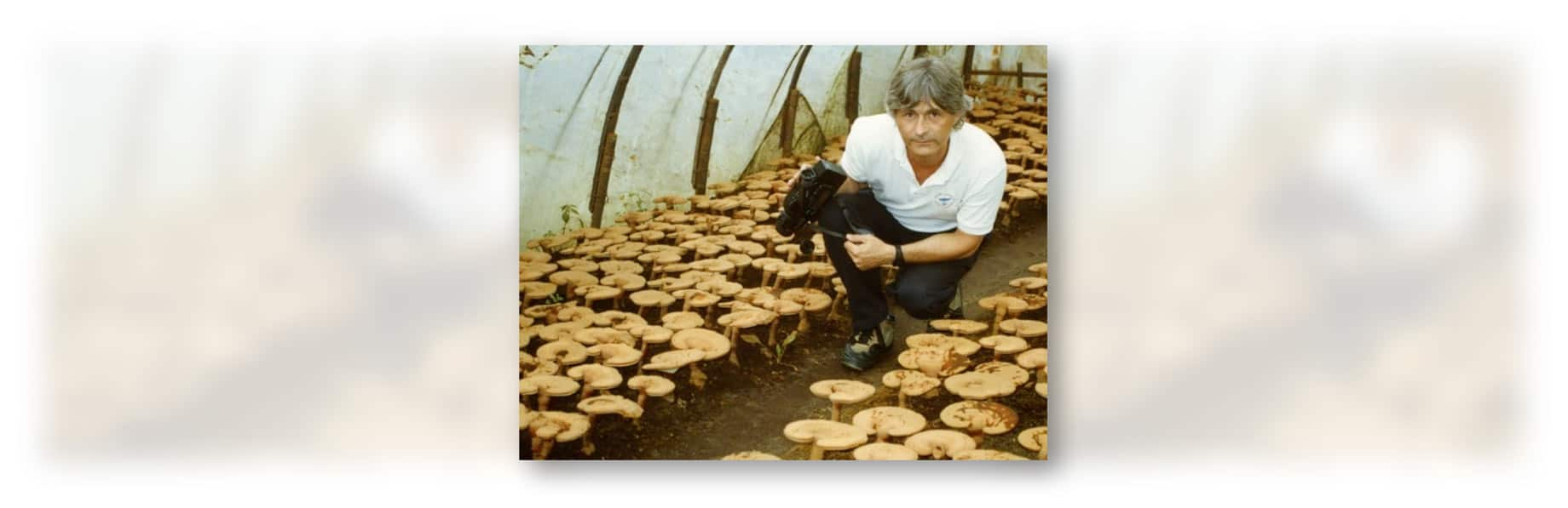 Jeff Chilton Reishi Farm 1990s