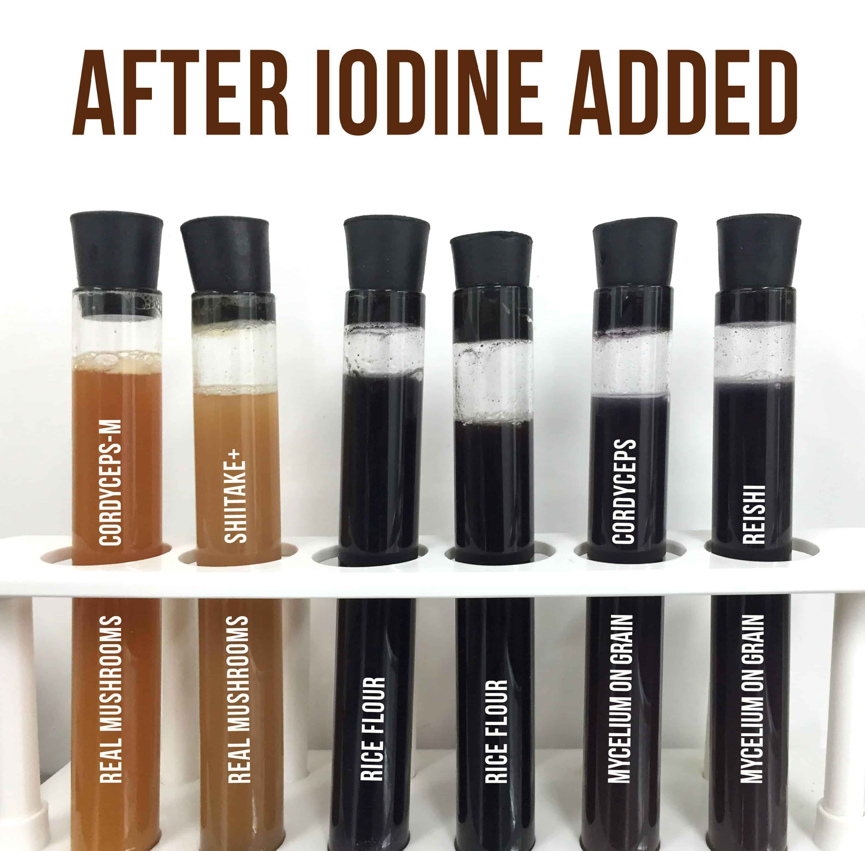 Iodine Starch Test on Mushroom Products - After Iodine