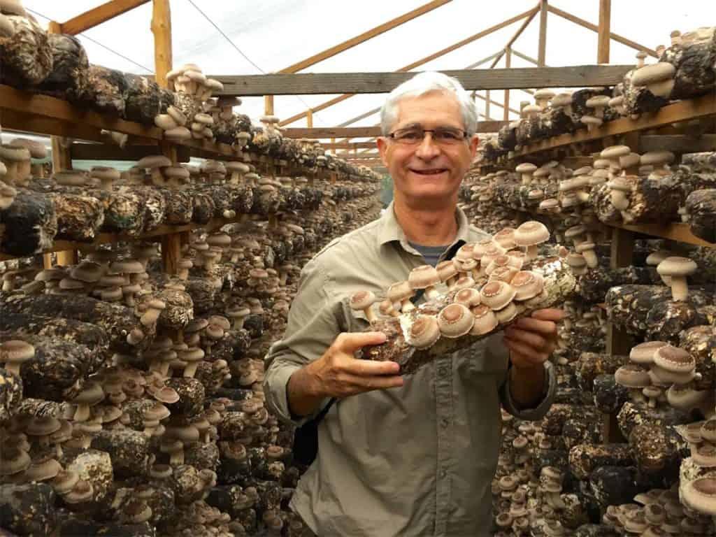 Jeff at an organic shiitake farm in China
