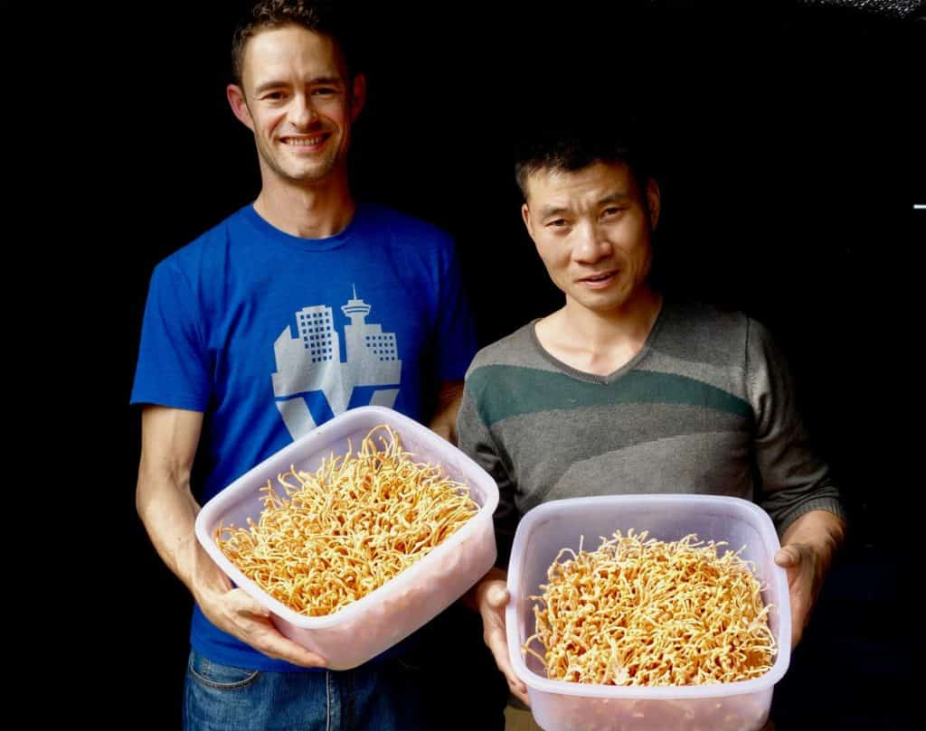 Skye enjoys time with one of the farmers at an organic Cordyceps militaris farm in China