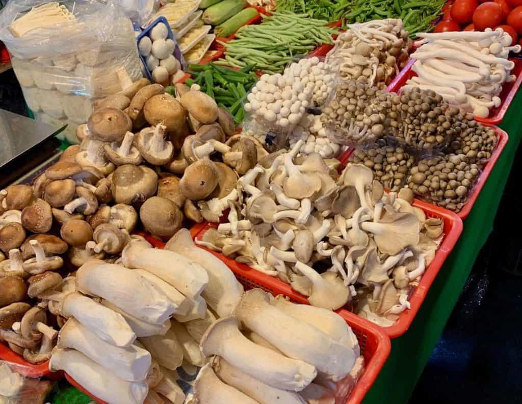 Medicinal mushroom varieties