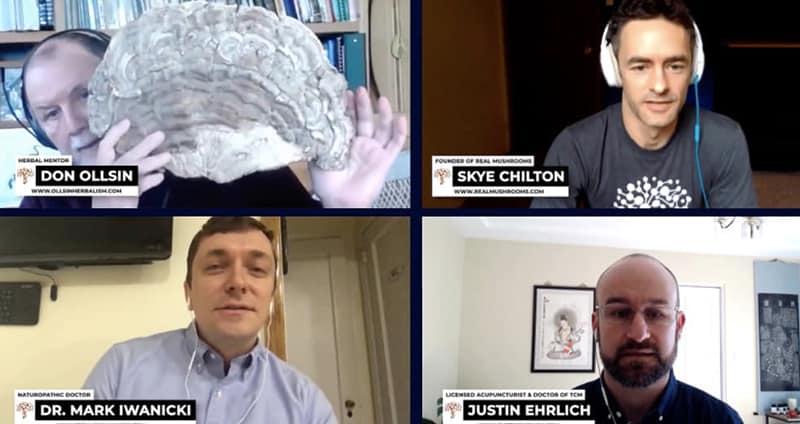 Adaptogenic Mushroom Experts