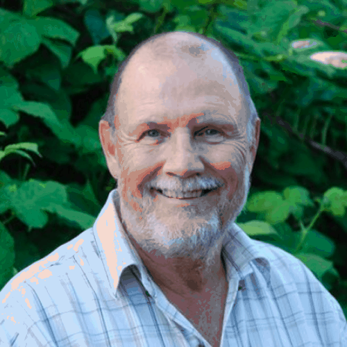 Don Ollsin on Adaptogenic Mushrooms