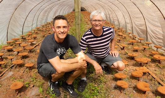 Jeff and Skye Chilton on organic reishi mushroom farm