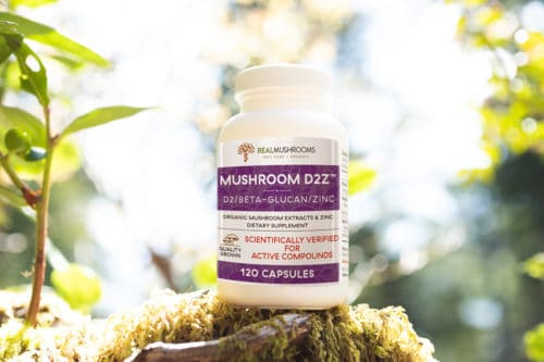 Mushroom D2Z