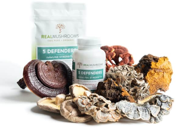 real mushrooms organic mushroom extracts
