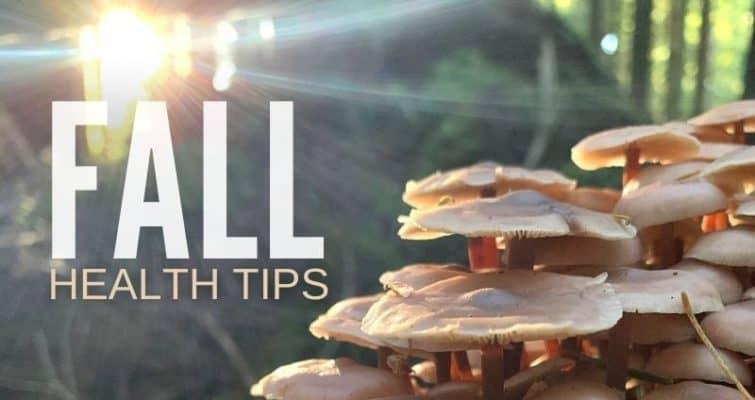 Fall Health Tips: A Mushroom-centric Survival Guide